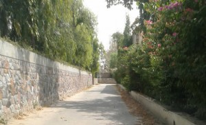 Farm house available on rent to lease rent out to Expats Diplomats MNC NRI in South Delhi Gurgaon