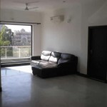 Fully furnished 3BHK house home appartment bungalow flat available on rent in gurgaon for NRI EXPATS FOREIGNER  (3)