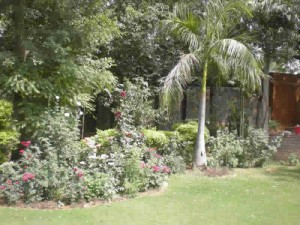 looking for farm house on rent in gurgaon new delhi india freehold india realtors
