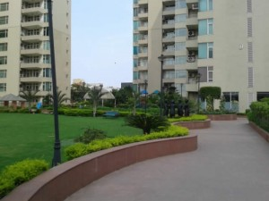want to lease rent out flat in raheja atlantis gurgaon india
